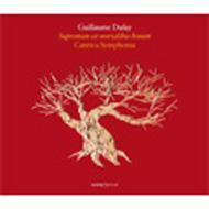 Motets Vol.2: Maletto / Cantica Symphonia