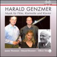 Music For Flute, Clarinet & Piano: Thomsen(Fl)Brunner(Cl)Triendl(P)