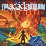 Acacia Strain