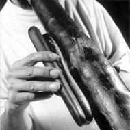 Didgeridoo: オーストラリアのディジェリドゥ: 大地の鼓動