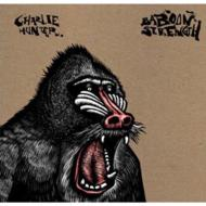 Baboon Strength