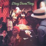 String Driven Thing: Second