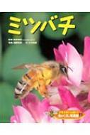 ドキドキいっぱい!虫のくらし写真館 11 ミツバチ