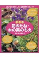 花のたね・木の実のちえ(5点セット)