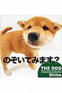Shiba THE DOG Photo Book Collection