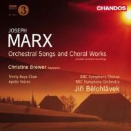 管弦楽伴奏付き歌曲集、合唱作品集 ブリューワー、ビエロフラーヴェク&BBC響、アポロ・ヴォイセズ、他
