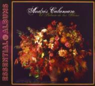 Essential Albums: Palacio De Las Flores