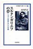 スルタンガリエフの夢 イスラム世界とロシア革命 岩波現代文庫
