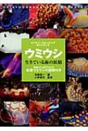 ウミウシ 生きている海の妖精 ネイチャーウォッチングガイドブック