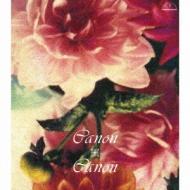 Canon X Canon