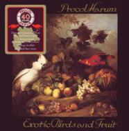 Exotic Birds & Fruit