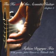 Heart Of The Acoustic Guitar: Chapter 2