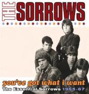 You've Got What I Want: The Essential Sorrows