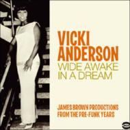 Wide Awake In A Dream