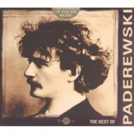 ピアノ協奏曲、ポーランド幻想曲 パレチニ、マクシミウク&シンフォニア・ヴァルソヴィア