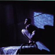Birdy -Peter Gabriel