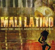 Mali Latino