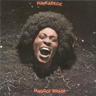 Magot Brain