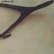 Wishbone Ash: 光なき世界