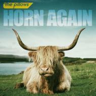 HORN AGAIN (+DVD)