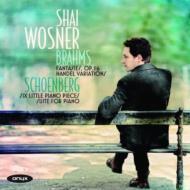 ブラームス:幻想曲集、ヘンデル変奏曲、シェーンベルク:ピアノ組曲、6つのピアノ小品 ウォスネル