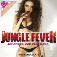 JUNGLE FEVER -JAPANESE DUB PLATE MIX-Produced by KATSUYUKI a.k.a CONTROLER from SPICY CHOCOLATE