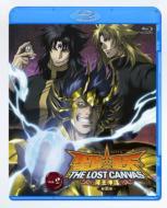 聖闘士星矢 THE LOST CANVAS 冥王神話<第2章> Vol.2