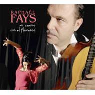 Mi Camino Con El Flamenco