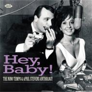 Hey Baby! -The Anthology