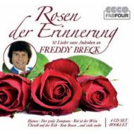 Rosen Zur Erinnerung