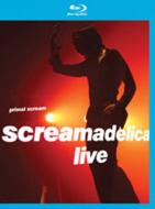 Primal Scream/Screamadelica Live