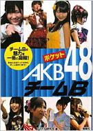 Pocket AKB48 Team B 2
