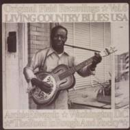 Living Country Blues Usa: Vol.6