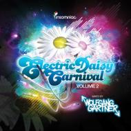 Electric Daisy Carnival 2
