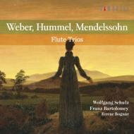 ヴェーバー:フルート三重奏曲、メンデルスゾーン:ピアノ三重奏曲第1番(フルート三重奏版)、他 シュルツ、バルトロメイ、ボーグナー