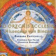 天の啓示による調和のシンフォニア バルダッツィ&アンサンブル・サン・フェリーチ