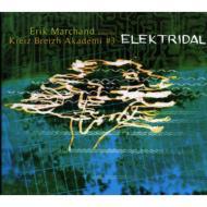 #3 -elektridal-Erik Marchand Presente