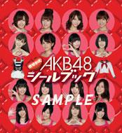AKB Changing Sticker Book Team K