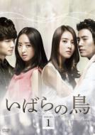 ����̒� DVD-SET 1