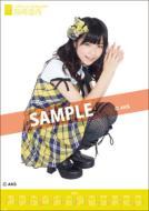 Haruka Shimazaki / 2012 Poster Type Calendar