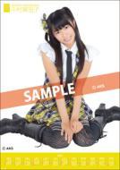 Mariko Nakamura / 2012 Poster Type Calendar