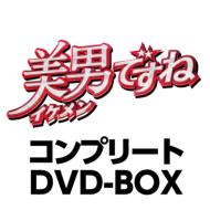 美男ですね コンプリートDVD-BOX