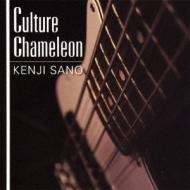 Culture Chameleon