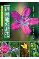 避暑地の野花 京都書院アーツコレクション