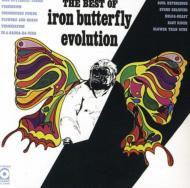 Best Of Iron Butterfly Evolution