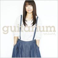 guitarium