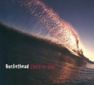 Electric Sea