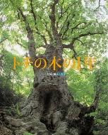 トチの木の1年 ランドセルブックス