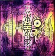 I Am Gemini