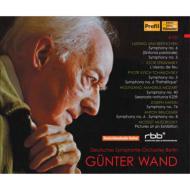 ヴァント&ベルリン・ドイツ交響楽団ライヴ集成ボックス第2集(8CD)